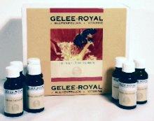 Gelée Royale + Blütenpollen + Vitamin E - Fläschchen